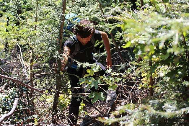 Kampf durch den Busch