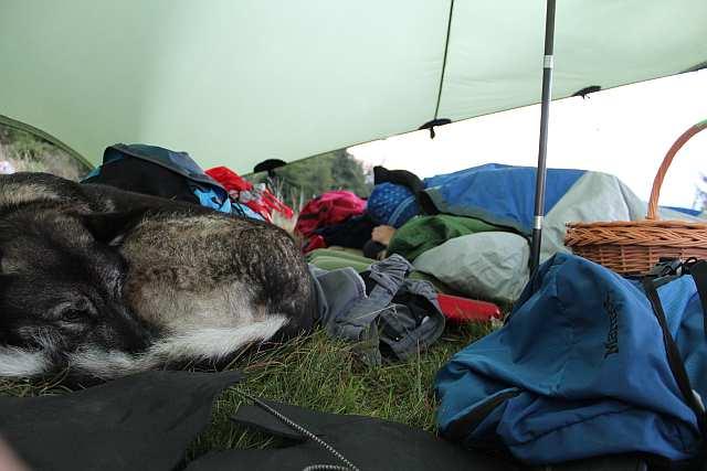 Morgens im Lager