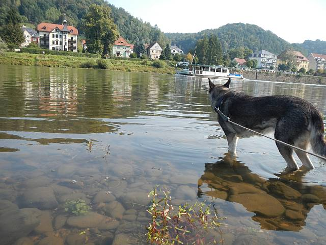 Elbe Bad Schandau