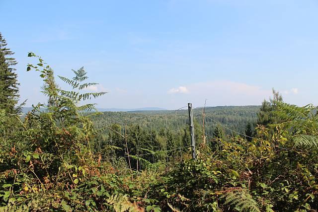 Aussicht Sachsenwald
