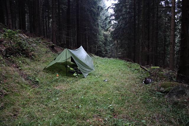 Tarplager im Fichtenwald
