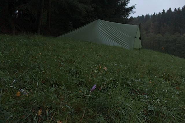 Tarplager neben Feuchtwiesen