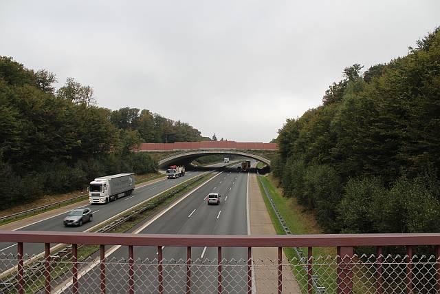 Grünbrücke über A7